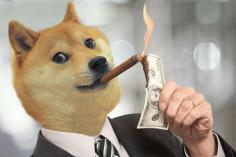 Conviene investire in Dogecoin